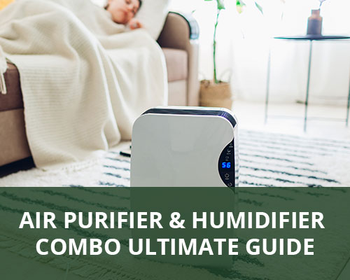 Air Purifier and Humidifier Combo Ultimate Guide
