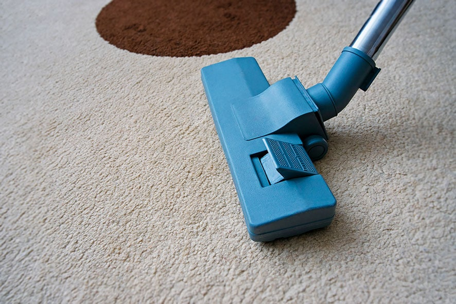 Carpet Cleaner For Pets Buying Guide