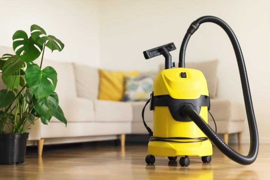 Image of yellow vacuum with a plant and couch