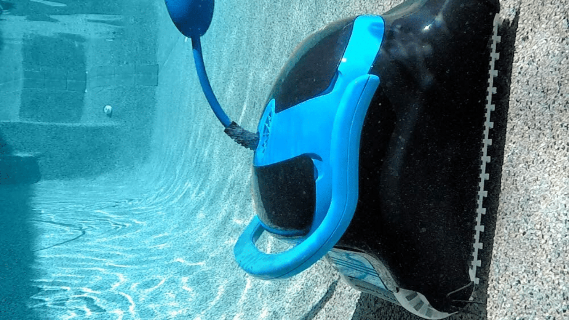 Image of Dolphin Nautilus CC Plus Automatic Robotic Pool Cleaner Climbing Wall