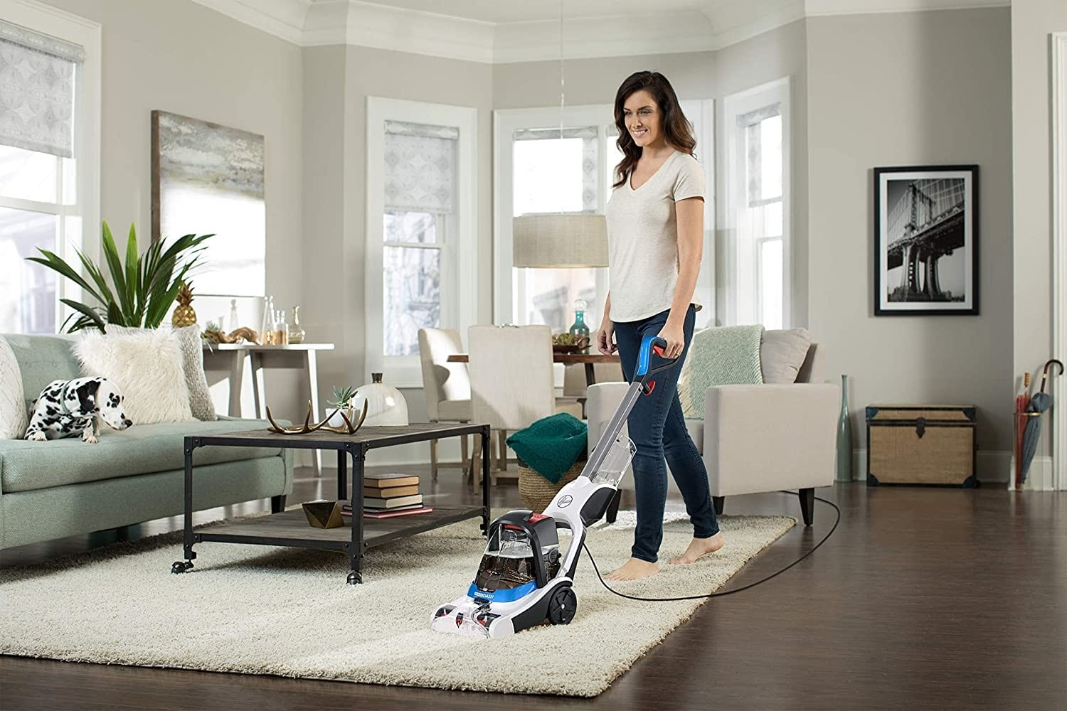 The Best Carpet Cleaner for Pets Reviews & Buying Guide 2021