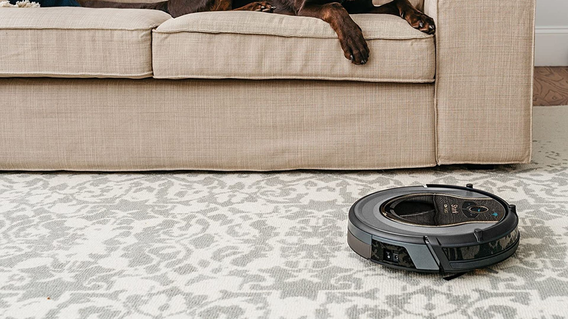 picture of dog sitting on sofa with carpet underneath being cleaned by SHARK ION Robot Vacuum R75 WiFi-Connected, Voice Control Dual-Action Robotic Vacuum Carpet and Hard Floor Cleaner, Works with Alexa (RV750)
