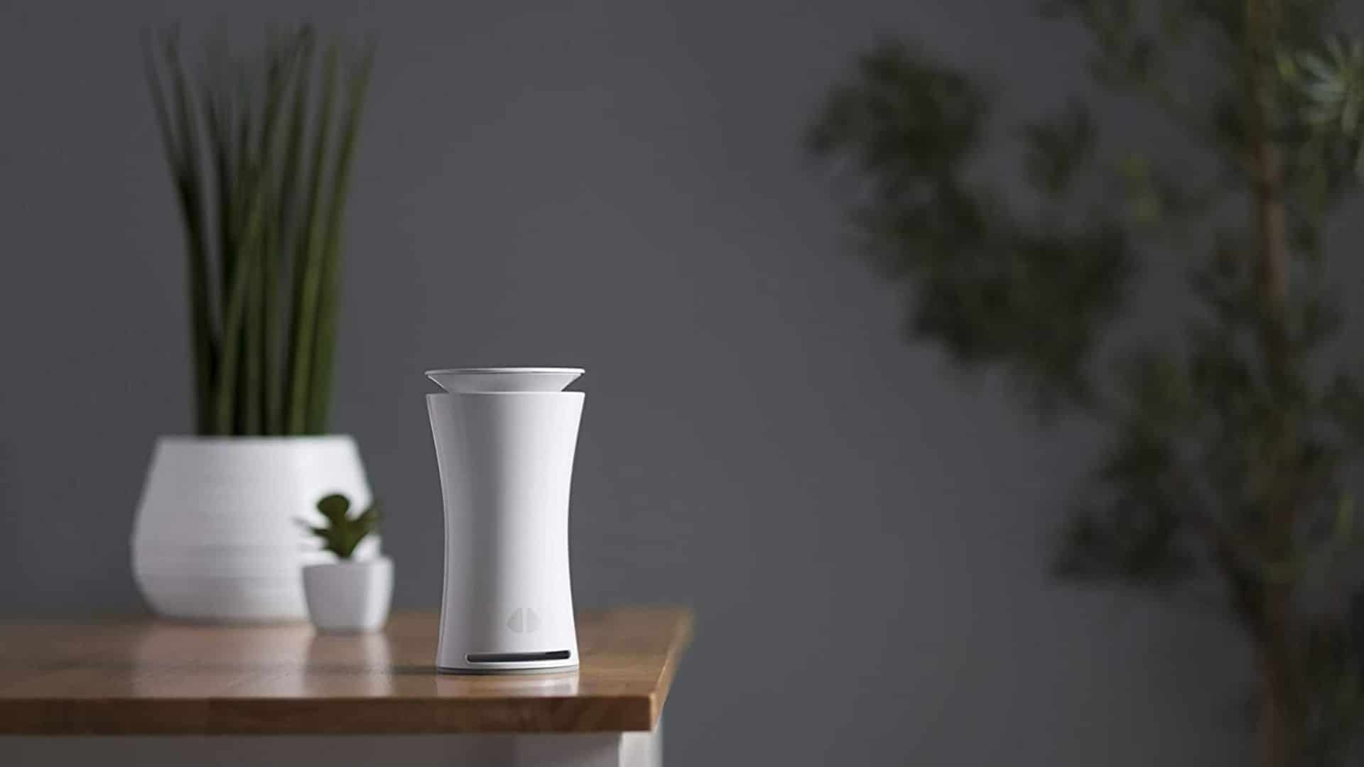 picture of an uhoo indoor air quality sensor on a wood table beside a plant